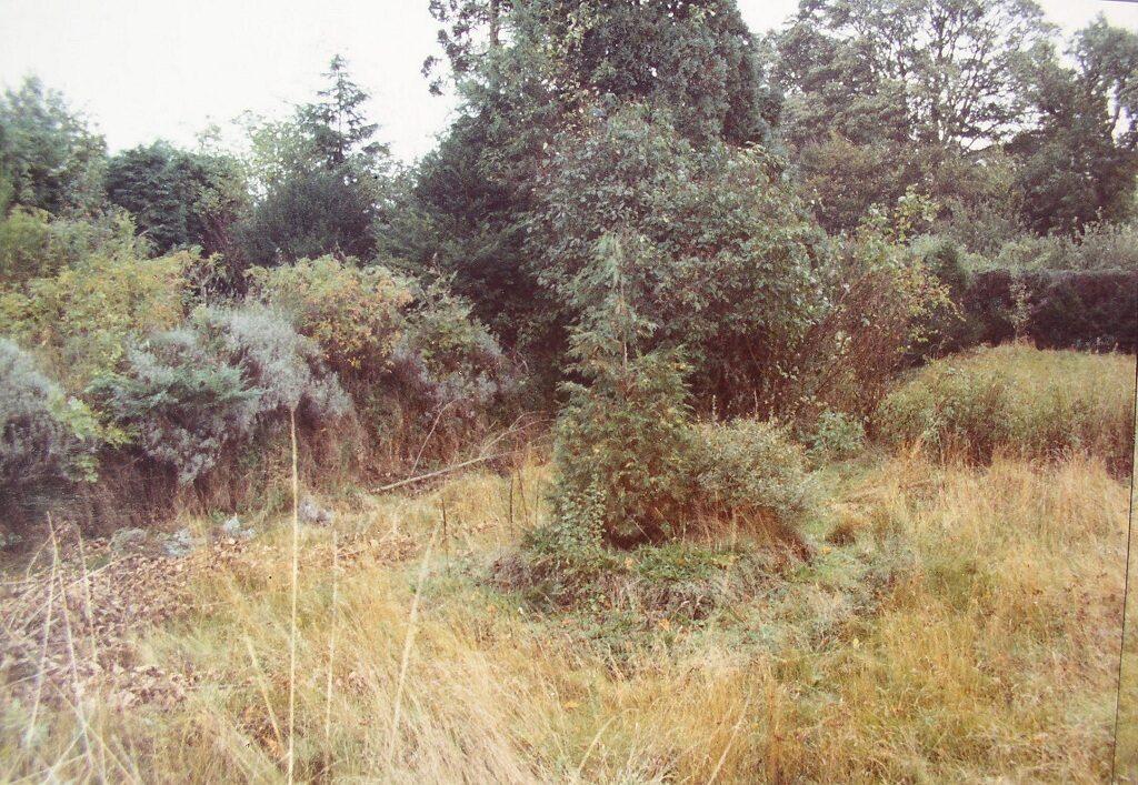 Rose Garden 1984