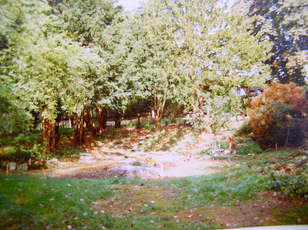 Wild Garden Pond 1984